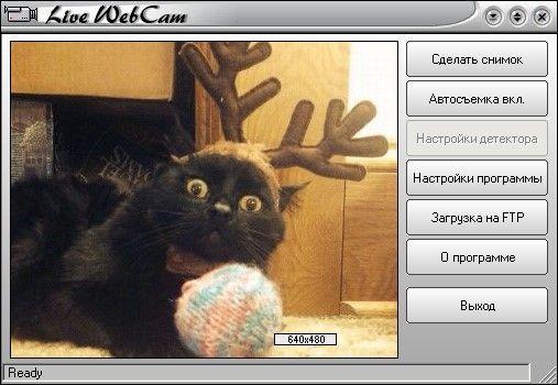 Как включить камеру на ноутбуке под Windows